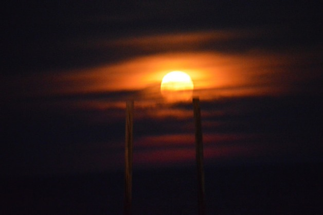 beach moonrise