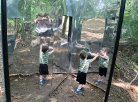 Mirror House at Daniel Stowe Botannical Garden